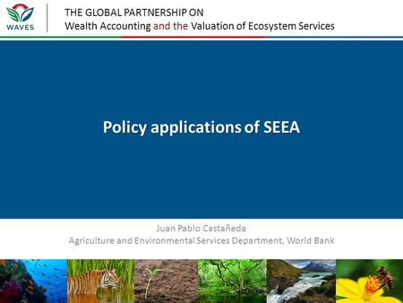THE GLOBAL PARTNERSHIP ON Wealth Accounting and the Valuation of Ecosystem Services Policy applications of SEEA Juan Pablo Castañeda Agriculture and Environmental.