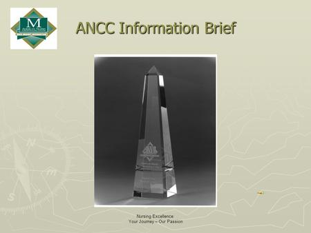 Nursing Excellence: Your Journey – Our Passion ANCC Information Brief.