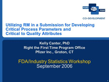 1 Utilizing RM in a Submission for Developing Critical Process Parameters and Critical to Quality Attributes Kelly Canter, PhD Right the First Time Program.