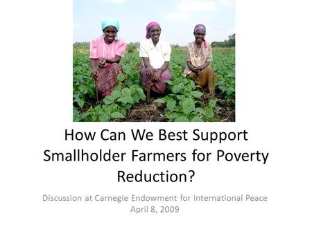 How Can We Best Support Smallholder Farmers for Poverty Reduction? Discussion at Carnegie Endowment for International Peace April 8, 2009.