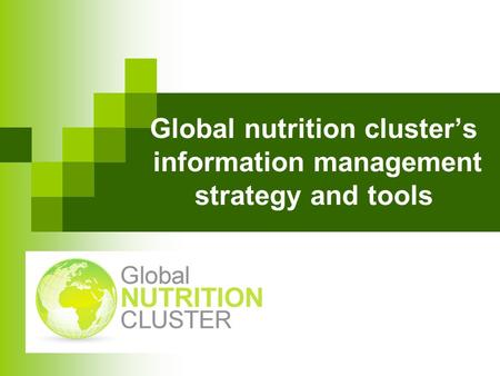 Global nutrition clusters information management strategy and tools.