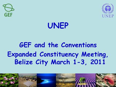 UNEP GEF and the Conventions Expanded Constituency Meeting, Belize City March 1-3, 2011.