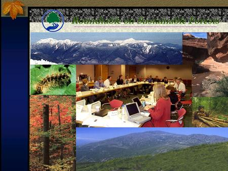 Roundtable on Sustainable Forests. Forests cover about 750 million acres -- more than a quarter of the entire United States -- and sustainable management.