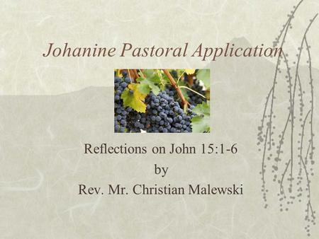 Johanine Pastoral Application Reflections on John 15:1-6 by Rev. Mr. Christian Malewski.