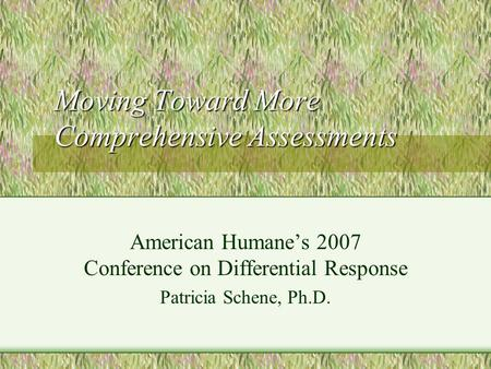 Moving Toward More Comprehensive Assessments American Humanes 2007 Conference on Differential Response Patricia Schene, Ph.D.