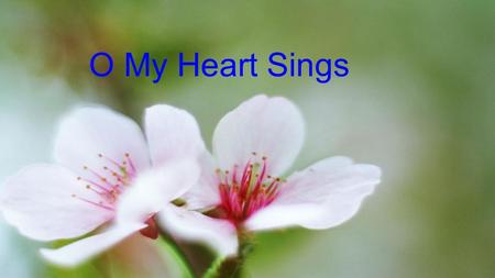 O My Heart Sings. O My Heart Sings – Verse So much to be thankful for, So much to be thankful for Where would I start, Many gifts to thank You for Many.