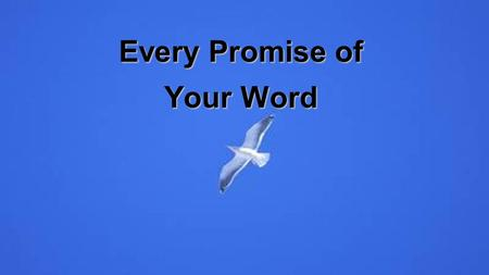 Every Promise of Your Word. From the breaking of the dawn To the setting of the sun I will stand on every promise of Your Word Words of power strong to.