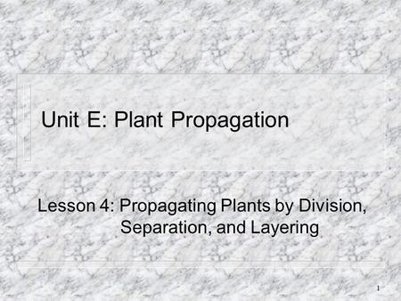 1 Unit E: Plant Propagation Lesson 4: Propagating Plants by Division, Separation, and Layering.