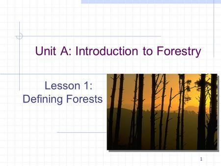 1 Unit A: Introduction to Forestry Lesson 1: Defining Forests.