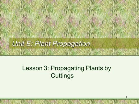 1 Unit E: Plant Propagation Lesson 3: Propagating Plants by Cuttings.