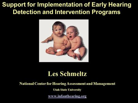 Support for Implementation of Early Hearing Detection and Intervention Programs Les Schmeltz National Center for Hearing Assessment and Management Utah.