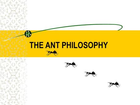 THE ANT PHILOSOPHY. 1 st PART PHILOSOPHY ANTS NEVER QUIT If theyre headed somewhere and you try to stop them, theyll look for another way. Theyll climb.