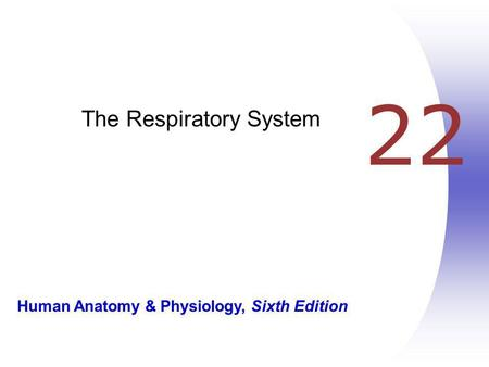 Human Anatomy & Physiology, Sixth Edition 22 The Respiratory System.
