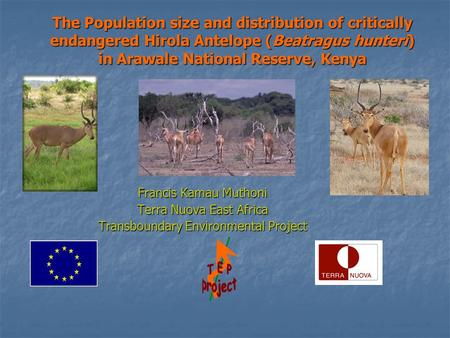 The Population size and distribution of critically endangered Hirola Antelope (Beatragus hunteri) in Arawale National Reserve, Kenya Francis Kamau Muthoni.