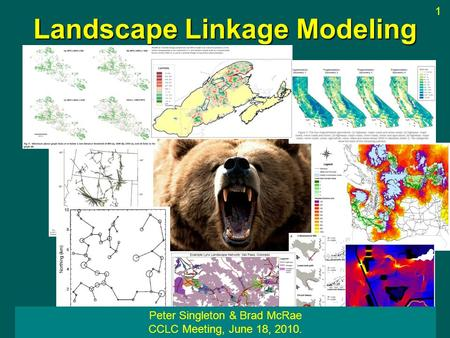 Landscape Linkage Modeling Peter Singleton & Brad McRae CCLC Meeting, June 18, 2010. 1.