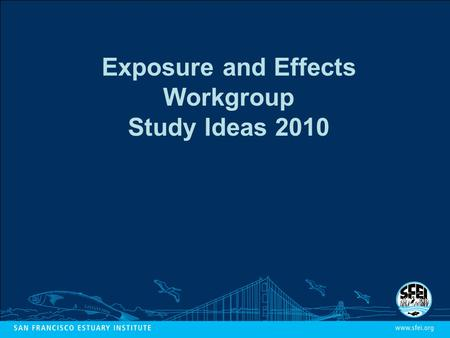 Exposure and Effects Workgroup Study Ideas 2010. Five-Year Plan: Risk to Birds Is there clear evidence of pollutant effects on survival, reproduction,