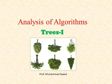 Trees-I Prof. Muhammad Saeed Analysis of Algorithms.