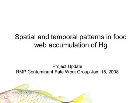 Spatial and temporal patterns in food web accumulation of Hg Project Update RMP Contaminant Fate Work Group Jan. 15, 2008.