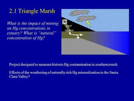 2.1 Triangle Marsh What is the impact of mining on Hg concentrations in estuary? What is natural concentration of Hg? Hg-P Hg- DOC Project designed to.