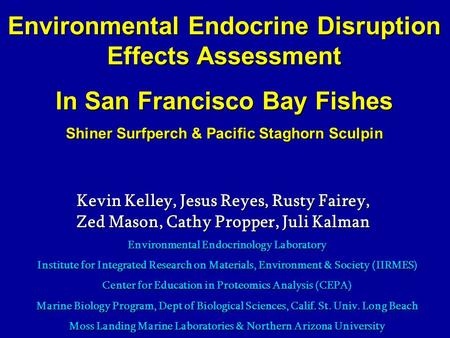 Environmental Endocrine Disruption Effects Assessment