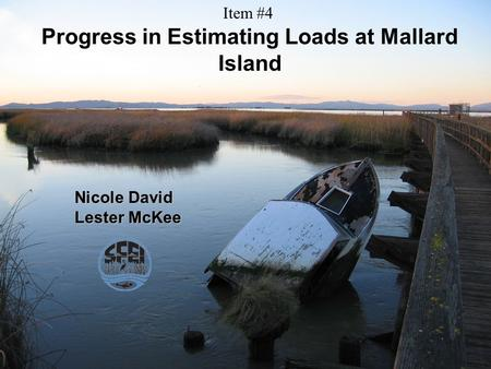 Progress in Estimating Loads at Mallard Island Nicole David Lester McKee Item #4.