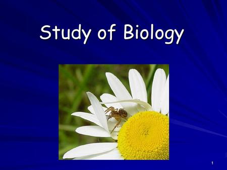 1 Study of Biology. 2 What is Biology? Biology is the study of all living things Living things are called organisms Living things are called organisms.