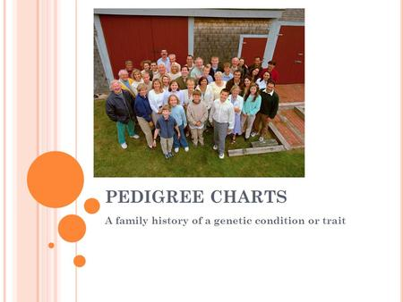 A family history of a genetic condition or trait