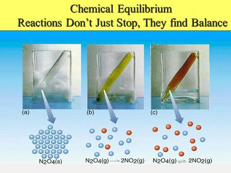 Chemical Equilibrium Reactions Dont Just Stop, They find Balance Reactions Dont Just Stop, They find Balance.
