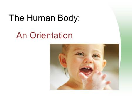 The Human Body: An Orientation. Overview of Anatomy and Physiology Anatomy – the study of the structure of body parts and their relationships to one another.