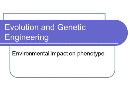 Evolution and Genetic Engineering Environmental impact on phenotype.