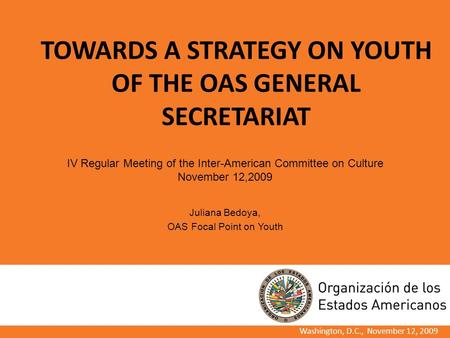 TOWARDS A STRATEGY ON YOUTH OF THE OAS GENERAL SECRETARIAT Washington, D.C., November 12, 2009 IV Regular Meeting of the Inter-American Committee on Culture.
