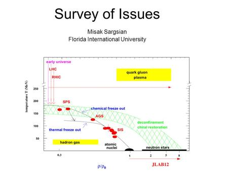 Survey of Issues Misak Sargsian Florida International University.