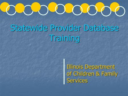 Statewide Provider Database Training Illinois Department of Children & Family Services.