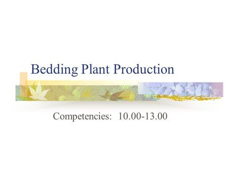 Bedding Plant Production Competencies: 10.00-13.00.