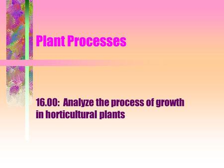 Plant Processes 16.00: Analyze the process of growth in horticultural plants.