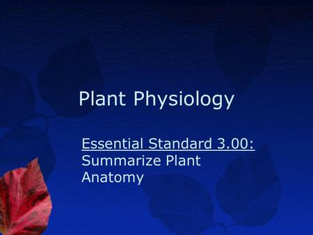 Plant Physiology Essential Standard 3.00: Summarize Plant Anatomy.