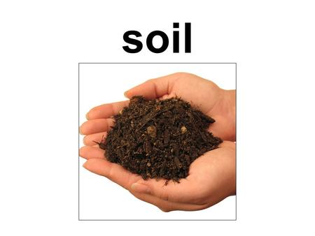 Soil. the top layer of the earths surface, consisting of rock and mineral particles mixed with organic matter.