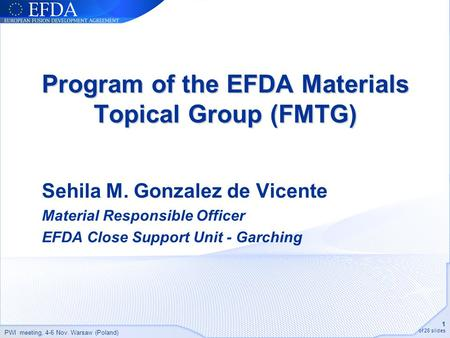 PWI meeting, 4-6 Nov. Warsaw (Poland) 1 of 26 slides Program of the EFDA Materials Topical Group (FMTG) Sehila M. Gonzalez de Vicente Material Responsible.