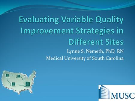 Lynne S. Nemeth, PhD, RN Medical University of South Carolina.