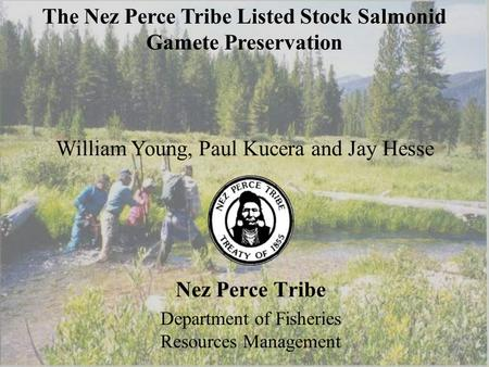 Nez Perce Tribe Department of Fisheries Resources Management William Young, Paul Kucera and Jay Hesse The Nez Perce Tribe Listed Stock Salmonid Gamete.