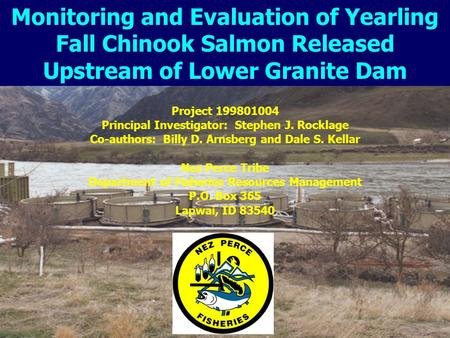 Project 199801004 Principal Investigator: Stephen J. Rocklage Co-authors: Billy D. Arnsberg and Dale S. Kellar Nez Perce Tribe Department of Fisheries.