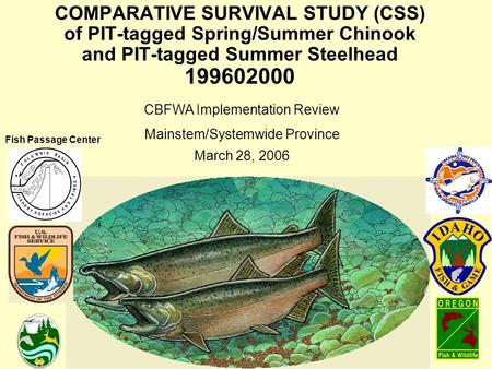 COMPARATIVE SURVIVAL STUDY (CSS) of PIT-tagged Spring/Summer Chinook and PIT-tagged Summer Steelhead 199602000 CBFWA Implementation Review Mainstem/Systemwide.