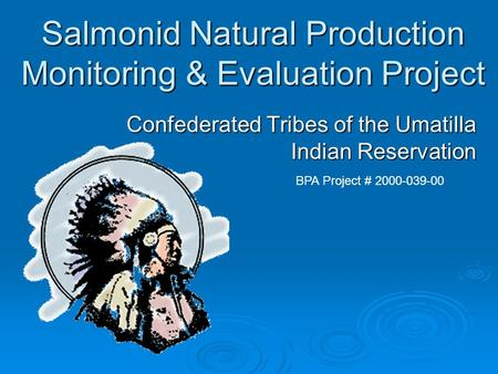 Salmonid Natural Production Monitoring & Evaluation Project Confederated Tribes of the Umatilla Indian Reservation BPA Project # 2000-039-00.