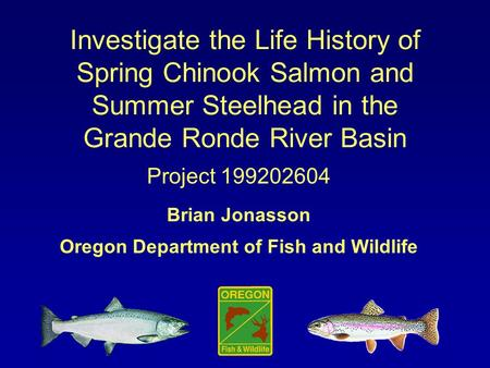 Investigate the Life History of Spring Chinook Salmon and Summer Steelhead in the Grande Ronde River Basin Project 199202604 Brian Jonasson Oregon Department.