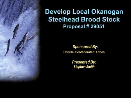 Develop Local Okanogan Steelhead Brood Stock Proposal # 29051 Sponsored By: Colville Confederated Tribes Presented By: Stephen Smith.
