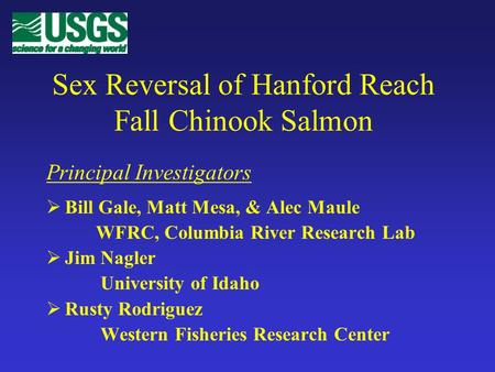 Sex Reversal of Hanford Reach Fall Chinook Salmon Bill Gale, Matt Mesa, & Alec Maule WFRC, Columbia River Research Lab Jim Nagler University of Idaho Rusty.