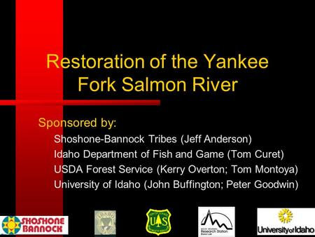 Restoration of the Yankee Fork Salmon River Sponsored by: Shoshone-Bannock Tribes (Jeff Anderson) Idaho Department of Fish and Game (Tom Curet) USDA Forest.