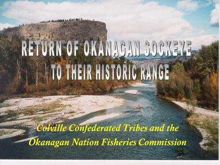 Colville Confederated Tribes and the Okanagan Nation Fisheries Commission.