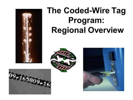 The Coded-Wire Tag Program: Regional Overview. Coded Wire Tags: Tiny Tool for Stock Identification –Stainless steel micro-tag –Introduced in late 1960s.