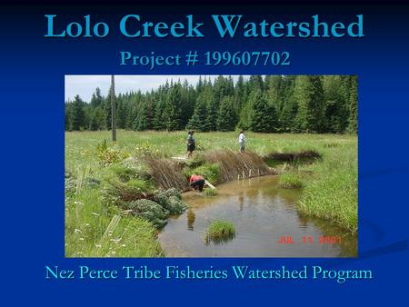 Lolo Creek Watershed Project #